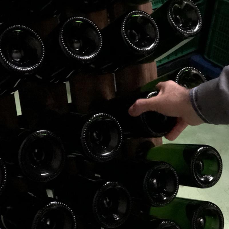 mover las botellas en la bobdega lagar quixote